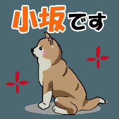 小坂さんが使う名前スタンプ・子犬イラスト