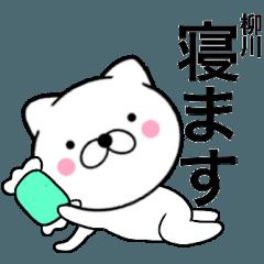 【柳川】が使う主婦が作ったデカ文字ネコ