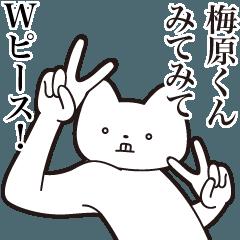 [LINEスタンプ] 【梅原くん・送る】しゃくれねこスタンプ